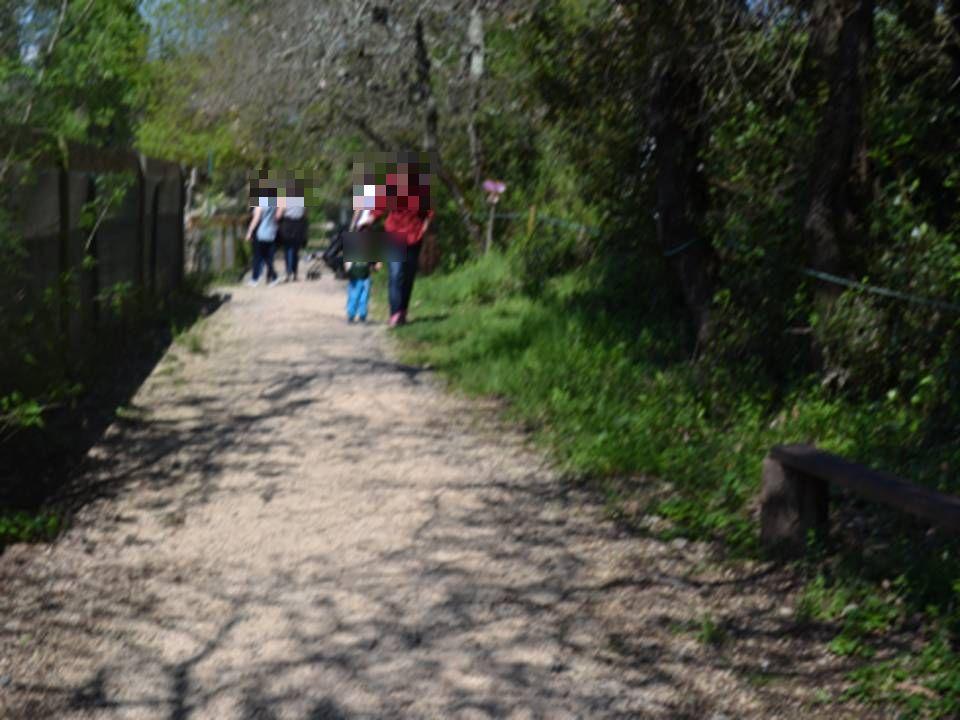 Vente Parc de loisirs près de Montpellier en pleine nature (34000)