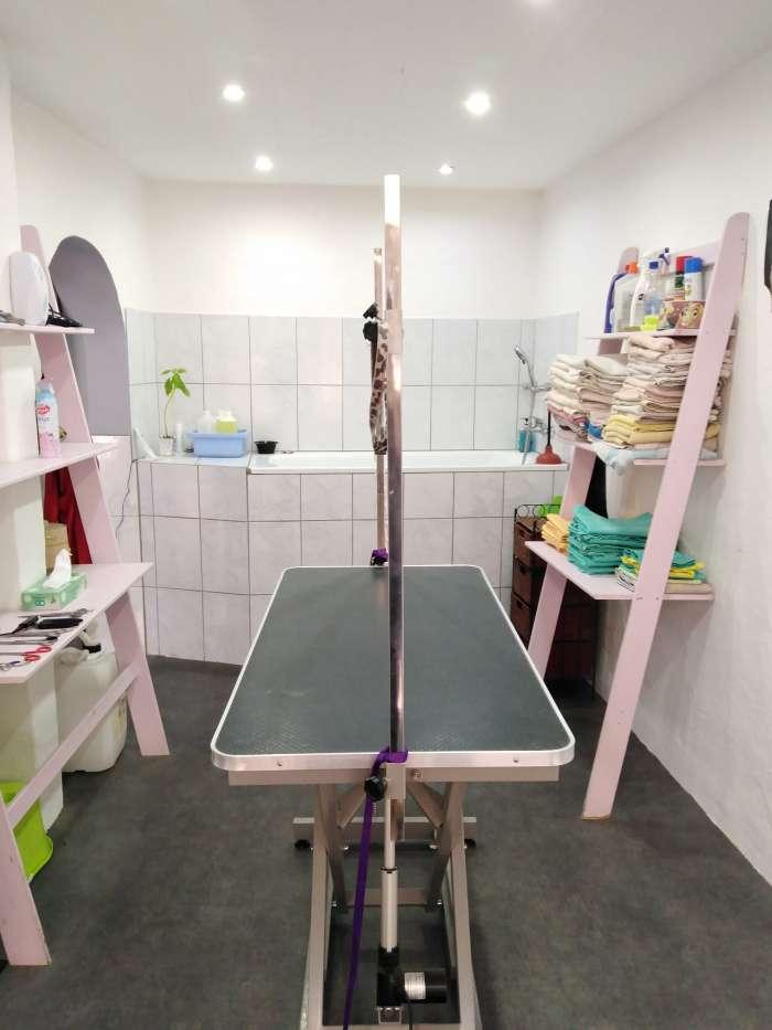 Vente Salon de toilettage pour animaux et vente d'articles à Cavaillon dans le centre ville (84300)