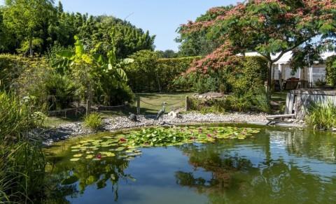 Vente Parc floral à Fécamp (76400)