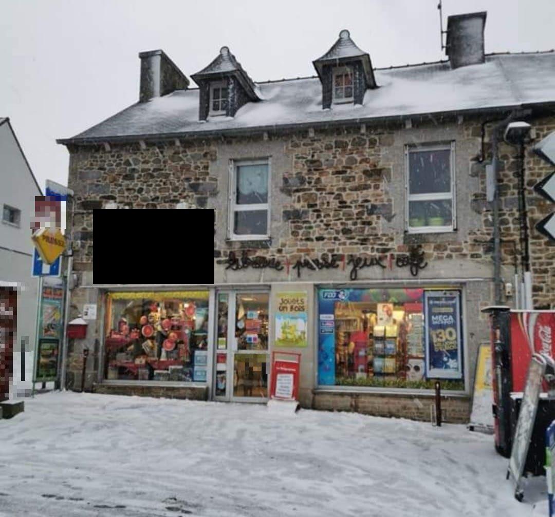 Vente Magassin de centre ville spécialisé dans la vente de jeux, jouets et livres à Ploufragan (22440)