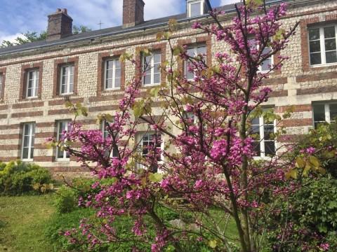 Vente Hôtel bureau à Les Loges (76790)
