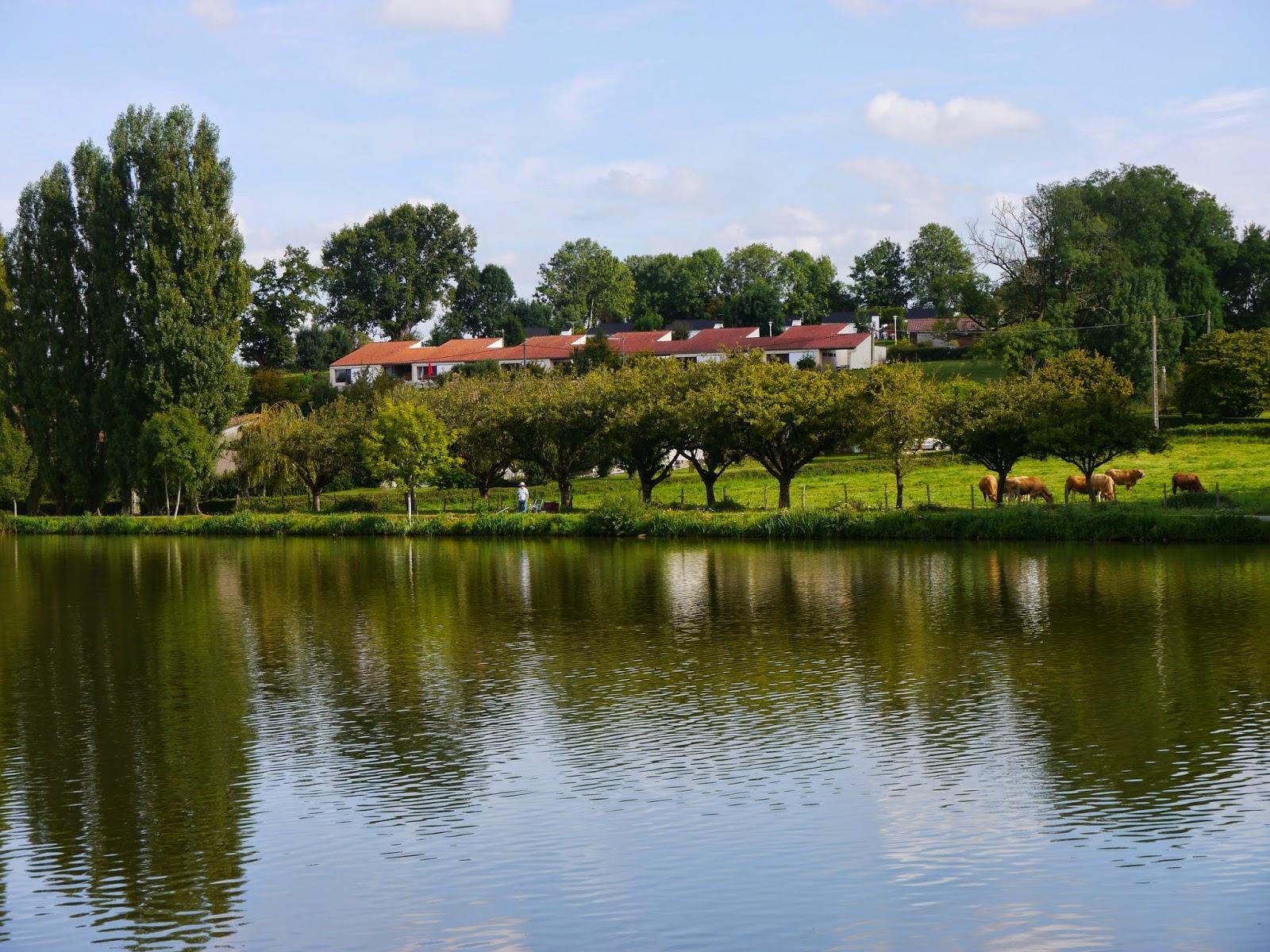 Vente Village de gites surplombant au lac avec baignade