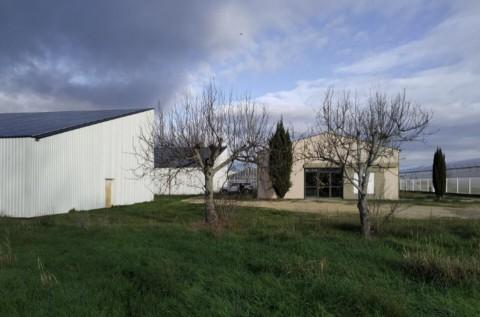 Vente Local d'activité / Entrepôt, 900 m2 à Pierrelatte (26700)