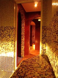 Vente Sauna, hammam et jacuzzi, 154 m2 à Valberg (06470)